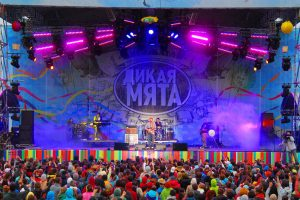 Фестиваль «Дикая Мята» — Тульская Область