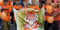 День Тигра — Владивосток