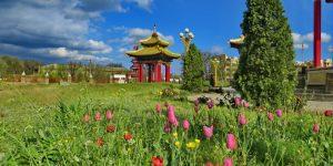 Фестиваль Тюльпанов — Республика Калмыкия