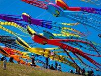 Фестиваль Воздушных Змеев «Пестрое Небо» — Москва
