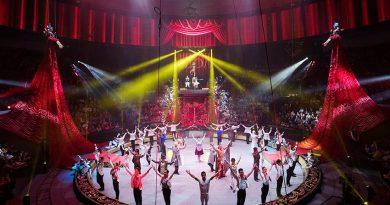 Цирковой Фестиваль Идол Москва