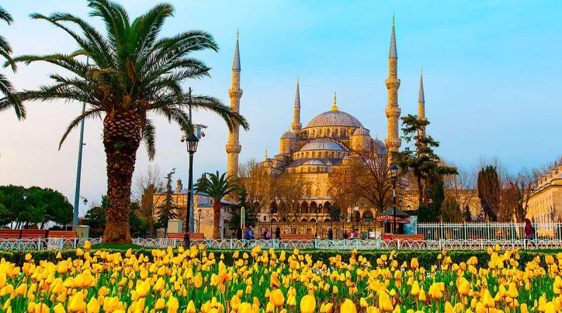 Фестиваль тюльпанов в Стамбуле