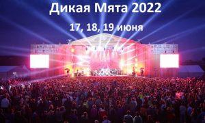 Фестиваль Дикая Мята — 2022